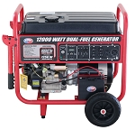 All Power 12,000 Watt Electric Start Dual Fuel Generator Product Manual (APGG12000GL)